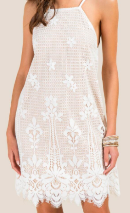 https://www.francescas.com/product/jasmine-lace-border-shift-dress.do?sortby=ourPicksAscend&refType=&from=fn&ecList=7&ecCategory=106124
